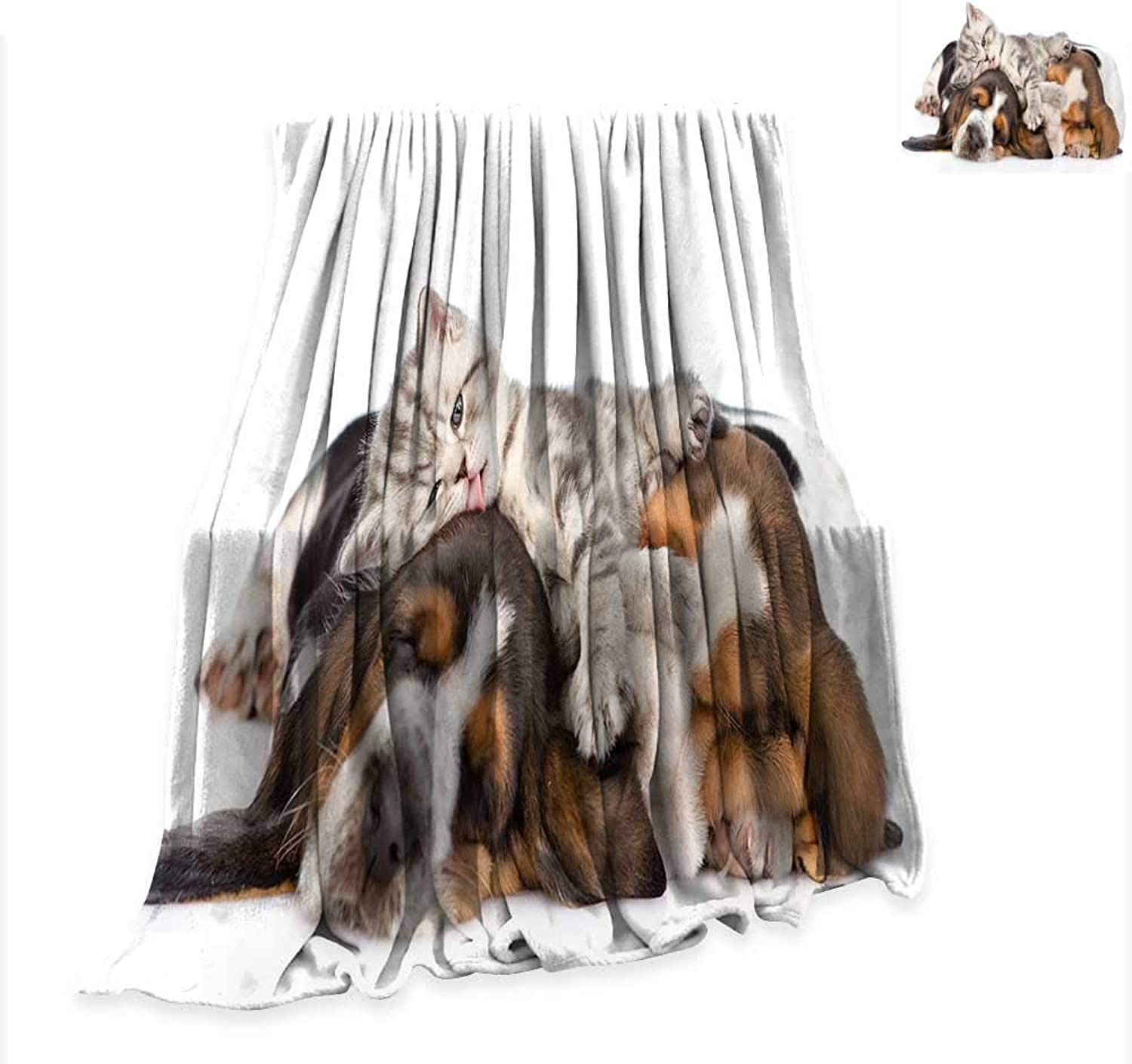 RenteriaDecor Blanket Funny,Newborn Kitten Lying on The Puppies Basset Hound and Licks Sleeping Cuddle Picture,Multicolor Digital Printing W51 x L60 inch