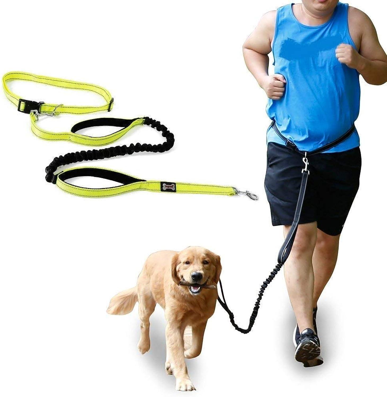 Hands Free Dog Leash Nylon Reflecting Running Pet Leash for Bungee Walking Hiking