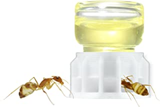 byFormica Liquid Feeder Micro 1 ml for Ants: for Water, Sugar Water, or Ant Nectar