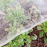 Garden Tailor 3x10m 50gsm Red para Insectos, Redes para Pajaros, Malla Antigranizo, Red de Protección, Malla Antiinsectos, Red Antipalomas, Proteger Verduras Plantas Flores Frutas de Jardín