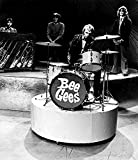 The Bee Gees on Stage Photo Print (20,32 x 25,40 cm)