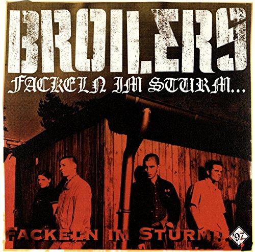 Fackeln im Sturm... [Vinyl LP]