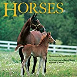 Horses: An Abridgement of Harold Roth's Big Book of Horses (All Aboard Books)