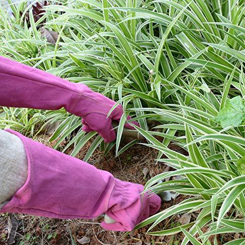 HANDLANDY Ladies Thorn Proof Gardening Gloves, Long Gauntlet Heavy Duty Garden Gloves, Elbow Length Women Leather Rose Pruning Gloves (Medium, Rosy)