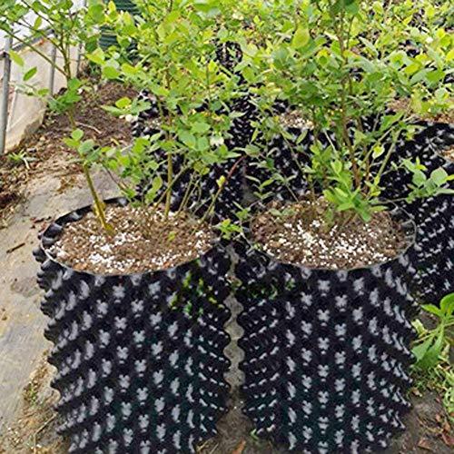 Luftwurzeltopf, Luftschnittbehälter, Tragbare Vermehrungspflanzgefäße Pflanzenwurzeltrainer Für Blumen, Gemüse, Bäume, Erstaunliche Ertragsbaumtöpfe Hydroponik