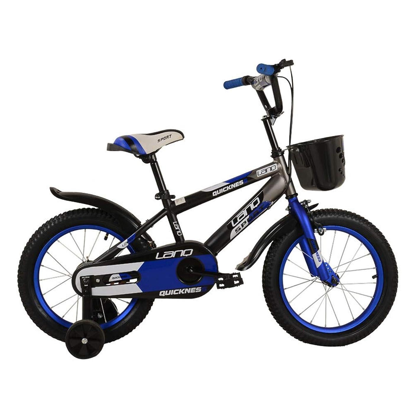 むちゃくちゃすき修理工室内自転車 フィットネスバイク キッズボーイズギルズバイク12inch Stablizers年齢3-5Y エアロフィットネス バイク (色 : 青)