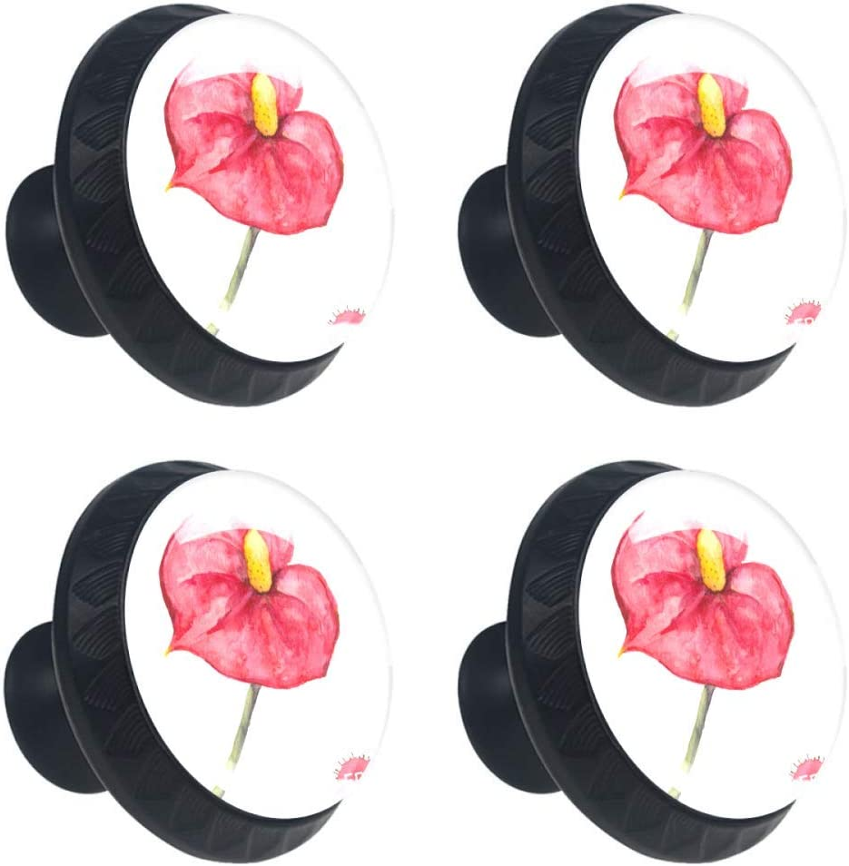 Shiiny Ranking TOP8 Tropical Flower Anthurium Low price Drawer Knob Pull Cabinet Handle