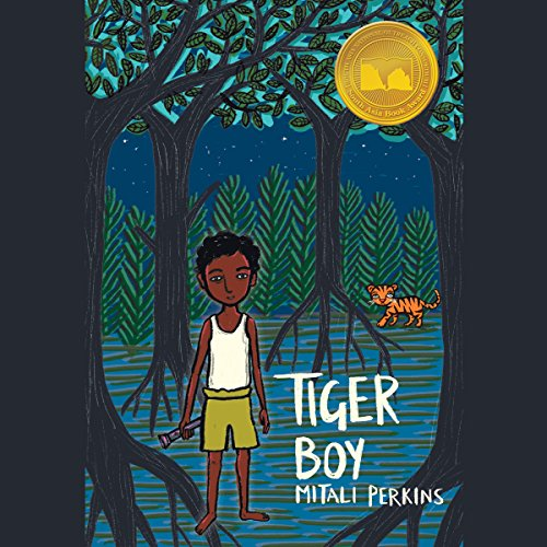Tiger Boy audiobook cover art