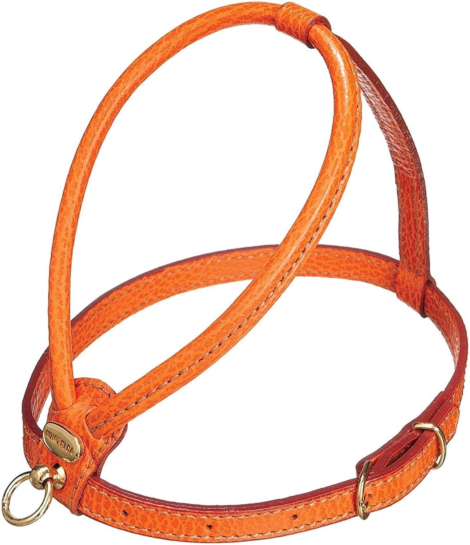 Petego La Cinopelca Tubular Calfskin Dog Harness with Pebble Grain Finish, orange Small, R723