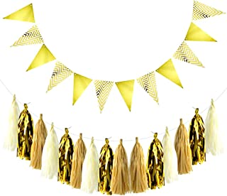 obmwang Party Decorations 15Pcs DIY Tissue Paper Tassels Garland and 12Pcs Sparkly Gold Paper Pennant Banner Triangle Flags Bunting for Birthday, Wedding, Baby Shower