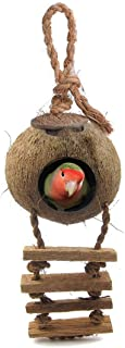 SunGrow Bird House with Ladder, Nesting Home and Bird Feeder, Mini Condo for Avians, Coco Texture Encourage Foot and Beak ...