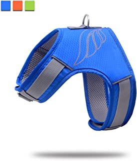 Wellbro No Pull Dog Harness, Mesh Dog Vest Harness, Soft Padded Reflective Adjustable Snap Buckles Small, Medium Large Pets