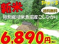 平成28年新潟県産特定産地米 (魚沼産特別栽培米3㎏×3)