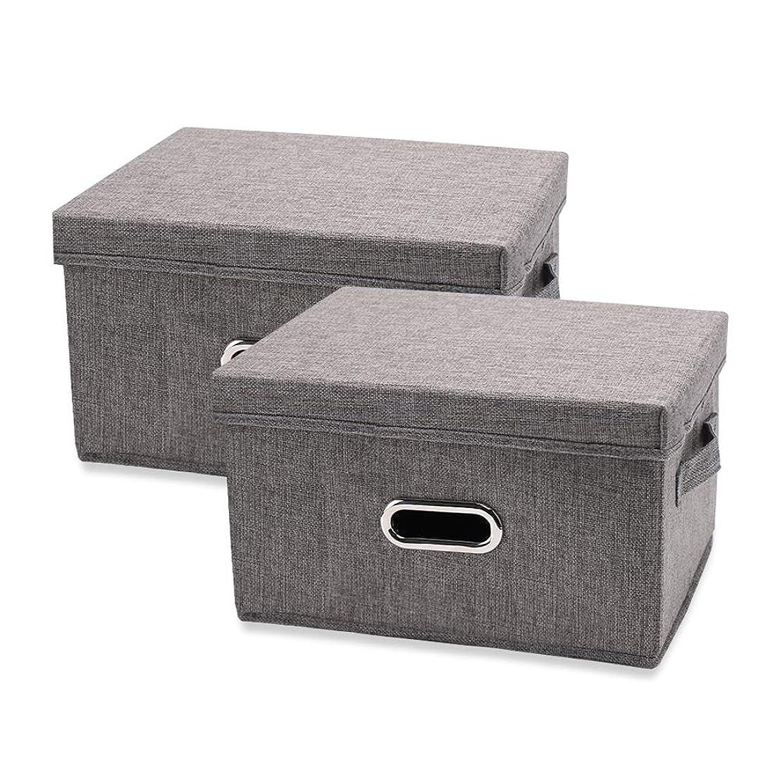 ランチョン失望視線SAVORI 衣類収納ケース 収納ボックス おもちゃ箱 折りたたみ 2個セット 耐用性 大容量 カラーボックス 保管 不織布 蓋付き(グレー)