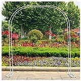 SSHHM Arco per Piante Rampicanti in Metallo,Grande Arco da Giardino,Supporto per la Coltivazione di Piante e Fiori/bianca / 3.5×2.2m