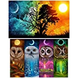 SINBLUE 2 Paquetes 5D DIY Diamond Painting Set, Full Square Drill Owl Pinturas y Sol & Luna Starry...