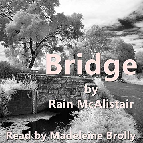 Bridge Titelbild