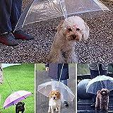 bluelans® Parapluie transparent imperméable pour chien Pet HappyLife et garder au sec sous la pluie