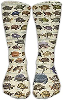 Turtles An Tortoises Comfortable Graduated Compression Calcetines For Women And Men,Athletic Calcetines