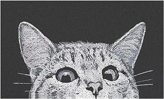 MR FANTASY Cat Front Door Mat Outdoor Mud Absorbent, Welcome Mat for Indoor & Outdoor, Doormat Entrance Mat Rug Outside Pa...