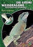 *Die Grüne Wasseragame: Physignathus cocincinus (Art für Art / Terraristik)