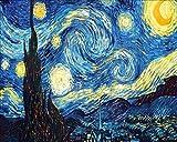 Pintura por números Pintura acrílica Pintura para Adultos Principiantes Inicio Decoración de Pared Van Gogh Rosa Blanca DIY 40X50Cm con Marco de Regalo