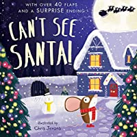 Can't See Santa!