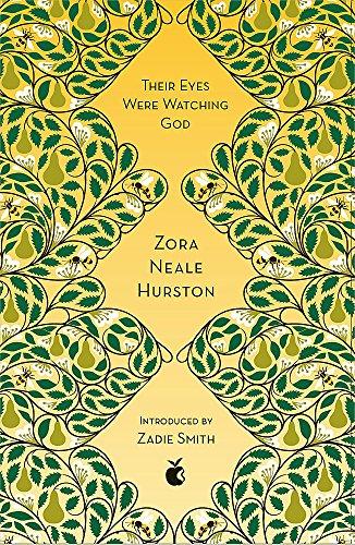Their Eyes Were Watching God: Zora Neale Hurston (VMC Designer Collection)
