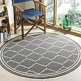 Safavieh Chloe Multipurpose Indoor/Outdoor Rug, Woven Polypropylene Round Carpet in Grey / Beige, 160 X 160 cm