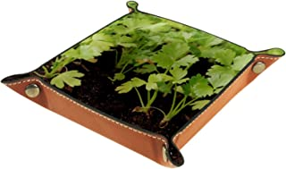 FCZ Plateau de rangement en cuir pour photographie de plantes céleri, table de chevet, bureau, boîte de rangement pour bij...