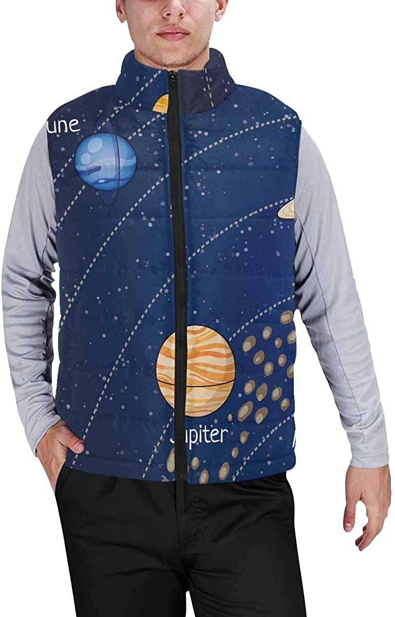 InterestPrint Casual Classic Quilted Sleeveless Vest for Men Snow Globe with Penguin