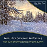 Winter Storm (Snowstorm, Wind Sounds: Nature Sounds for Meditation, Deep Sleep, Spa, Healing, Relaxation)