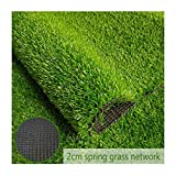 Rasen PING- Kunstrasen Rasenteppich Grün, Florhöhe 20mm Hohe Dichte Falscher Flammschutzmittel Mit Ablaufloch Pflasterdekoration for Innen Und Außen 2m Breit (Size : 2m×5m)