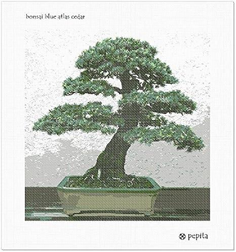 Amazon Com Pepita Bonsai Blue Atlas Cedar Needlepoint Kit