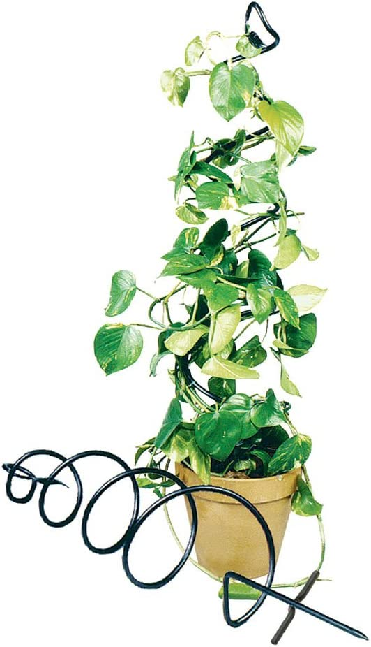 Black Achla Designs FST-01 Spiral Wrought Iron Garden Trellis 8x42 inches Pack of 2