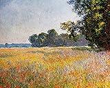 1art1 Claude Monet - Haferfeld Mit Mohnblumen, 1890 Poster