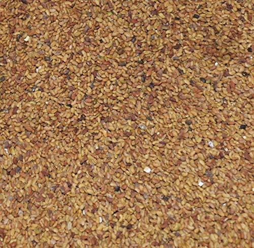 18,95€ (18,95€ pro 1kg) 1000g Bio Alfalfa Samen (Luzerne) | 1 kg ✔ Keimsaat für Sprossen | Sprossenanzucht | Microgreen Mikrogrün | Keimfähig | SUPERFOOD | plastikfrei verpackt | DE-ÖKO-070 - STAYUNG