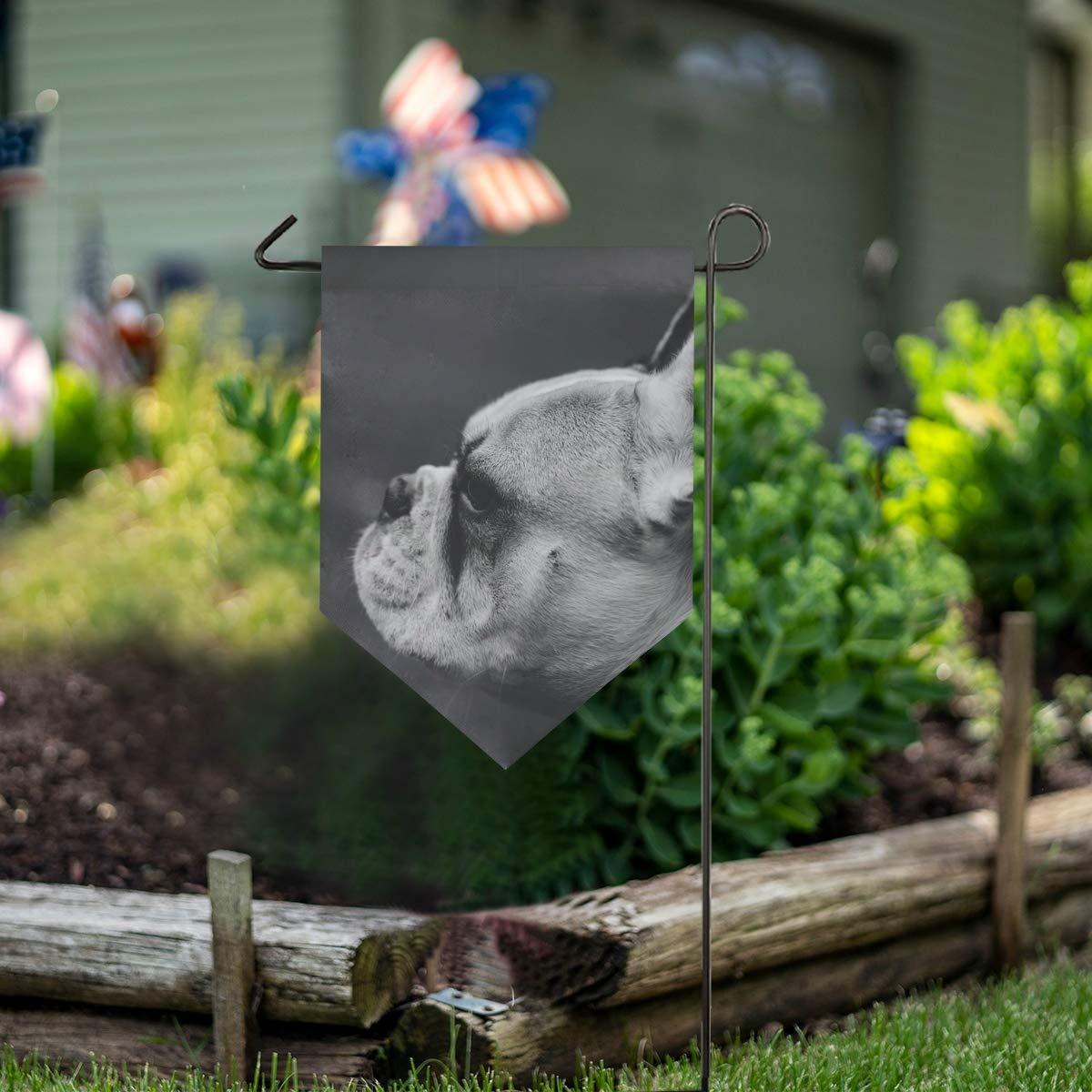 MONTOJ Bulldog Home Sweet Home - Bandera Vertical de Doble Cara ...