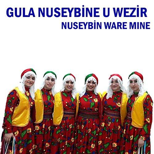 Güla Nusaybine u Wezir