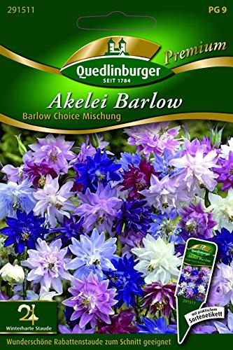 Akelei Barlow Choice Mischung - Aquilegia vulgaris QLB Premium Saatgut Blumen zweijährig