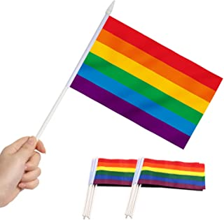 Best Anley Rainbow Gay Pride Mini Flag 12 Pack - Hand Held Small Miniature LGBT Flags on Stick - Fade Resistant & Vivid Colors - 5x8 Inch with Solid Pole & Spear Top Review