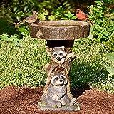 Outdoor Bird Bath Bowl, Resin Pedestal Fountain Decoration for Yard, Garden w/Planter Base, Feeder, Wonderful Outside Decor, Best Choice Gift (Raccoon)