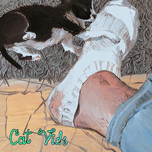 Cat Vids