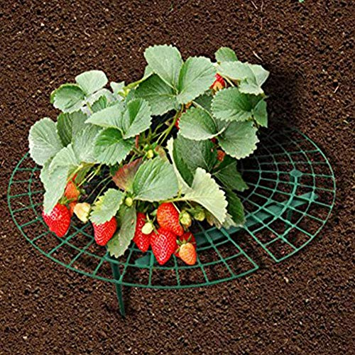 Caiqinlen Erdbeerständer Pflanzenwachstumsregal Erdbeerrahmen, Erdbeerständer, strapazierfähiges Kunststoffmaterial gegen Bodenfäule Gestell für Kletterpflanzen, Gartenarbeit auf de