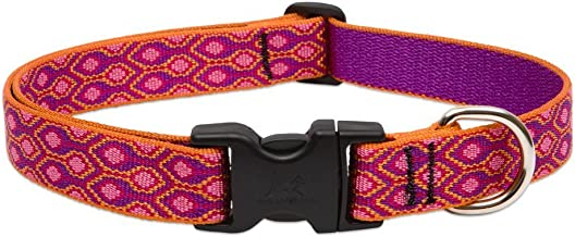 Lupine Alpen Glow Adjustable Dog Collar for Medium and Large Dogs