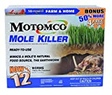 Get Rid Of Moles In Lawns