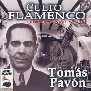 Culto Flamenco: Guitarra de Niño Ricardo