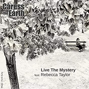 Live the Mystery (feat. Rebecca Taylor)