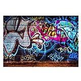 FUT Colorful Graffiti Vinyl Photo Backdrop Background Wall Decor Studio, Colorful Graffiti(5x3ft), 1.5x0.9m (5x3ft)