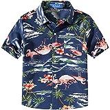 SSLR Big Boy's Flamingos Button Down Short Sleeve Aloha Hawaiian Shirt (Large (14-16), Dark Blue)